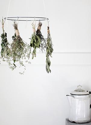 sécher des herbes aromatiques